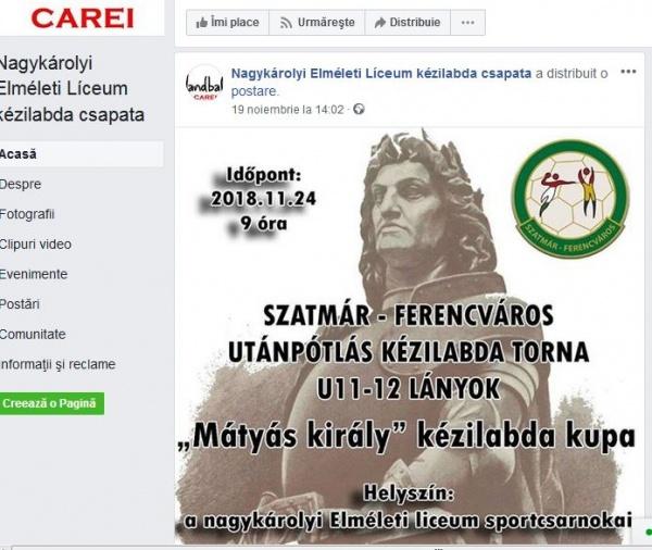Careiul în Anul Centenar. Cine se ruşinează de limba română?
