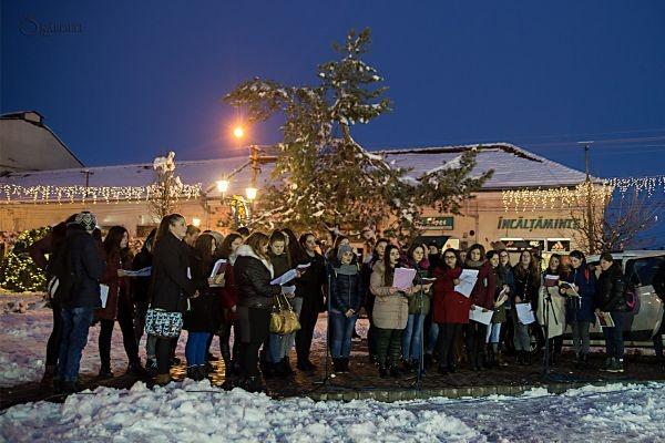 Şcolile careiene la Târgul de Crăciun din Carei