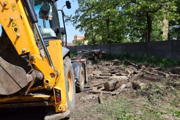 Se golește depozitul ilegal de lemne din Parcul Dendrologic Carei