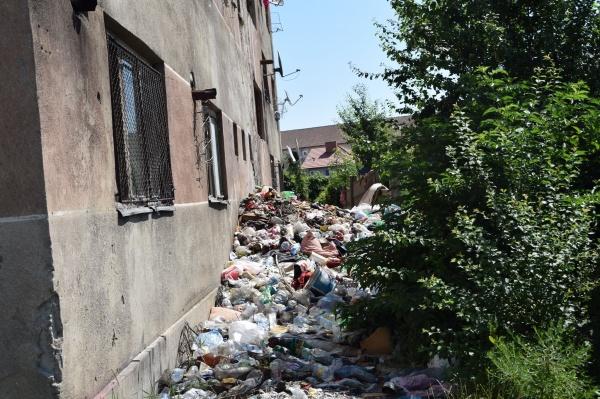 Mizerie! Un bloc  de locuințe sociale administrat de Primăria Carei