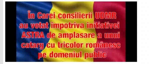 Catarg cu tricolor românesc interzis la Carei pe domeniul public