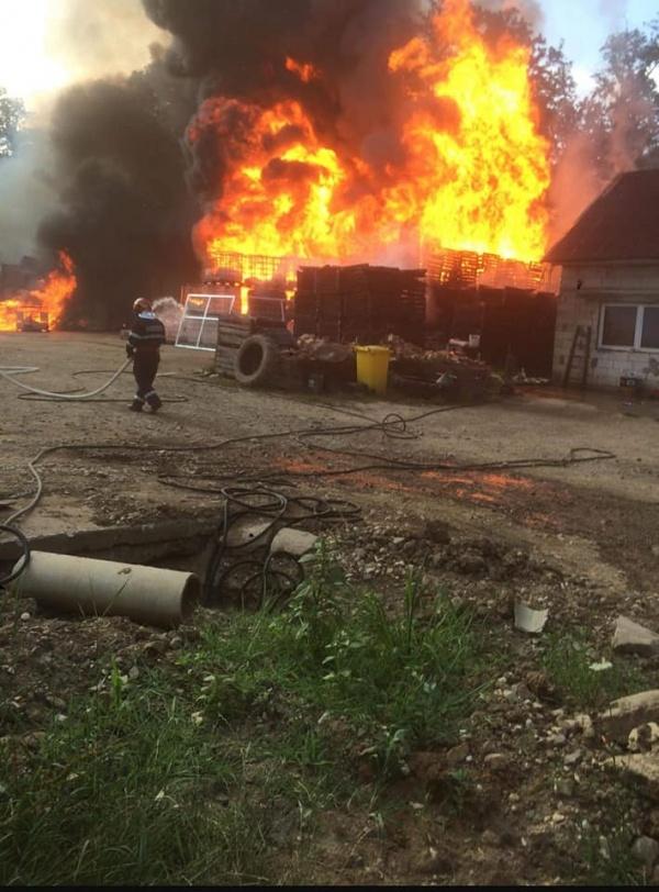 Detașamentul de Pompieri Carei a intervenit pentru gestionarea a 1311 situații de urgență în primele 6 luni ale anului.