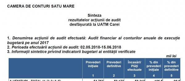 Raport de Audit financiar al Curții de Conturi: La Primăria Carei una se raportează la fisc și alta găsești în contabilitate