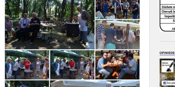 PSD și ALDE Carei au spus prezent doar la picnicul UDMR Carei nu și la comemorarea lui Avram Iancu