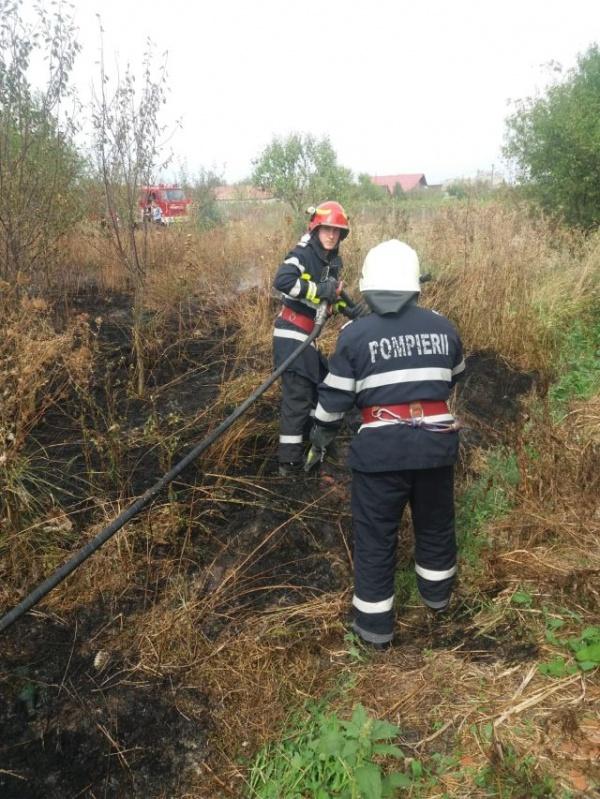 Incendii de miriști și vegetație uscată. Măsuri specifice