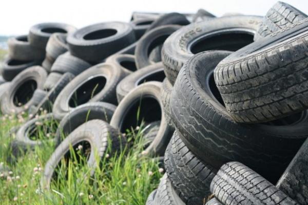 Colectare deșeuri vegetale, anvelope uzate și deșeuri de echipamente electrice şi electronice (DEEE) de către Primăria Carei