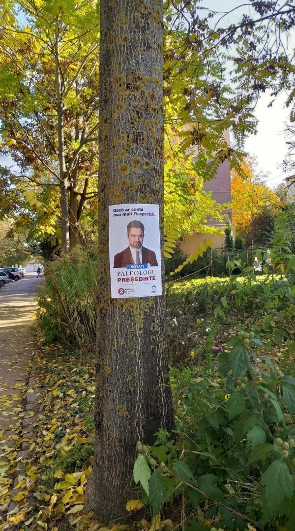 Candidatul PMP la prezidențiale preferă copacii