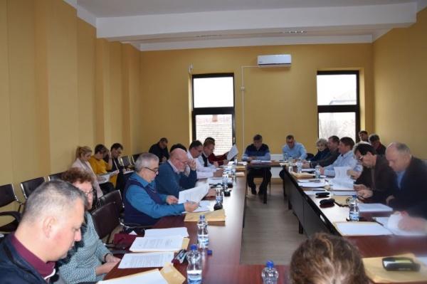 Consilierii careieni au aprobat suplimentarea cheltuielilor propuse de Primăria Carei pentru monumentul Avram Iancu