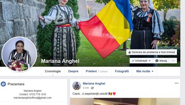 ,,Carei…o experiență unică,, scrie Mariana Anghel după spectacolul de Ziua Națională