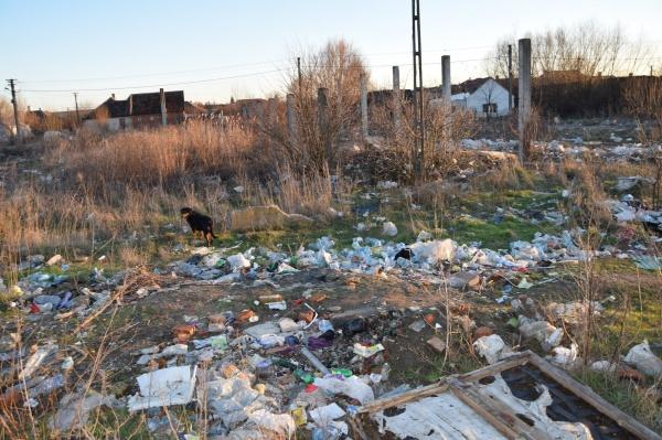 Garda de Mediu Comisariatul Satu Mare confirmă situația terenurilor pline de gunoaie de la Carei