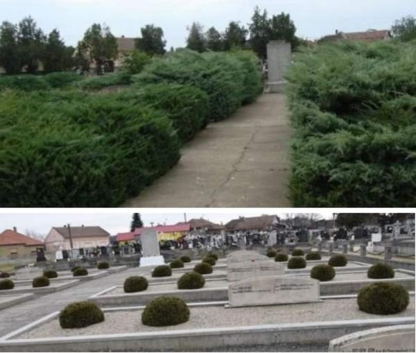 Buletin de Carei și mormintele eroilor români căzuți pentru eliberarea orașului