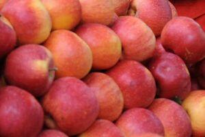 Un măr mâncat pe zi ar putea întări sistemul imunitar şi reduce inflamaţiile datorate greutăţii şi diabetului
