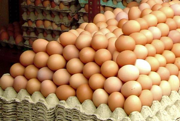 Beneficiul consumului de ouă pentru organism