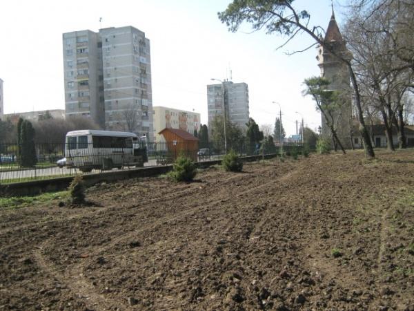 Au început plantările de puieţi în Parc