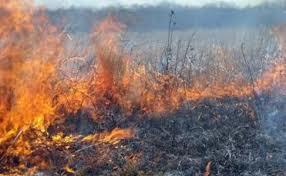 Patru incendii  în decurs de 12 ore. Unul la Carei