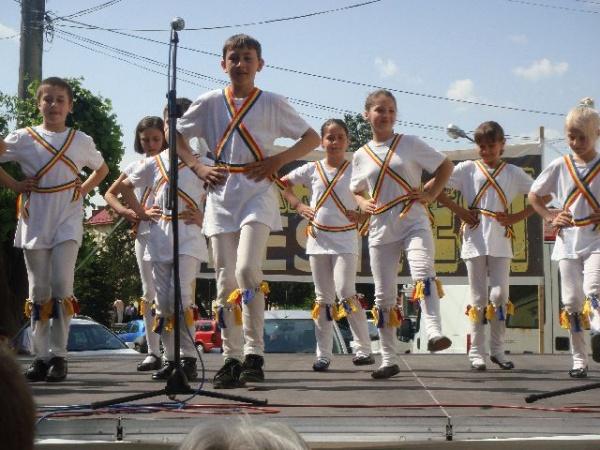 Românii au tradiţie în tratarea naturală a sănătăţii