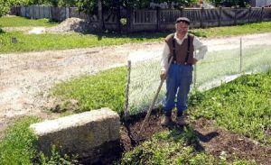 ANAF: Agricultorii care cultivă terenuri mai mari de 20 de hectare vor plăti TVA