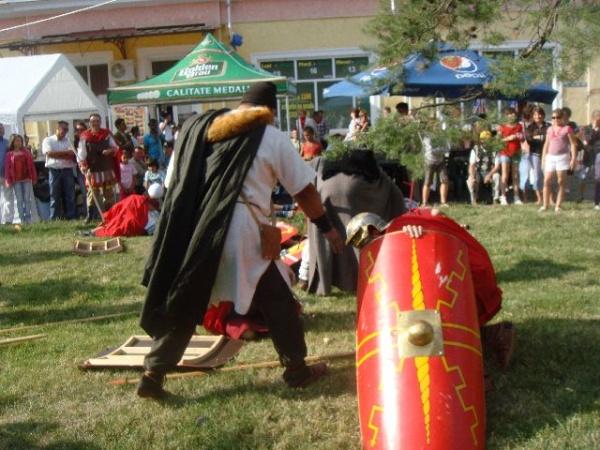 Lupte daco-romane de Zilele Careiului