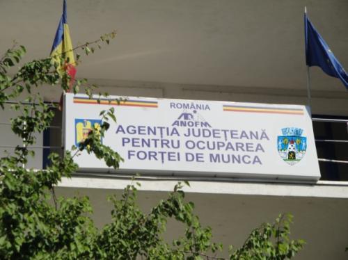 663 de locuri de muncă vacante în județ