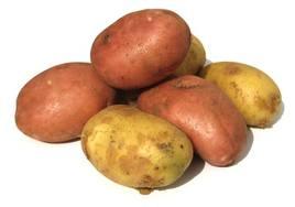 Cartofii înlătură dorinţa de a mai ronţăi altceva între mese