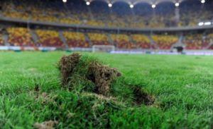 """Afacerea """"Gazon pentru Naţional Arena"""": Olandezii lui Becali, trimişi acasă de UEFA"""