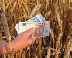 Vreţi să faceţi afaceri in agricultură? Iată cum puteţi obţine bani europeni
