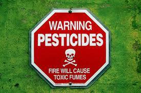 Viceprimar de Pişcolt cercetat penal pentru poluarea solului cu pesticide