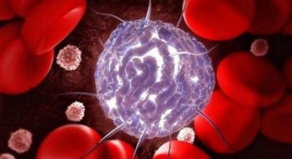 6 ţesuturi ale corpului uman care se pot regenera