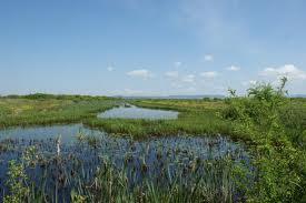 Începe demolarea construcţiilor ilegale în Ariile Protejate Râul Tur