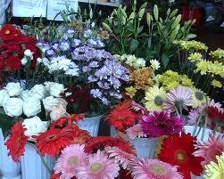 Ajută florile să ţină cât mai mult timp