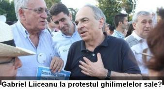 Plagiatorii Gabriel Liiceanu, Andrei Pleşu şi Andreea Pora protestează împotriva unui plagiat