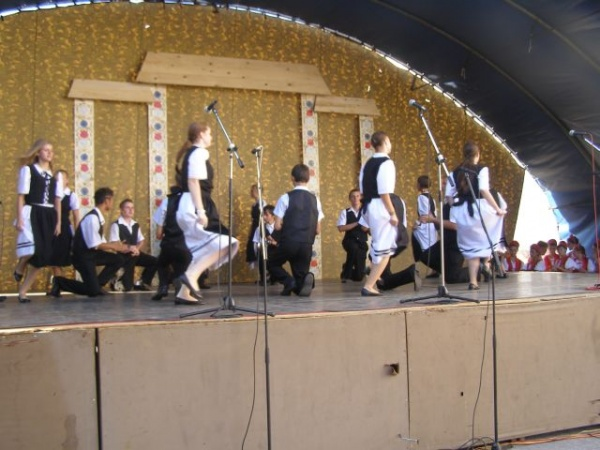 Folclor maghiar şi german la zilele careiene