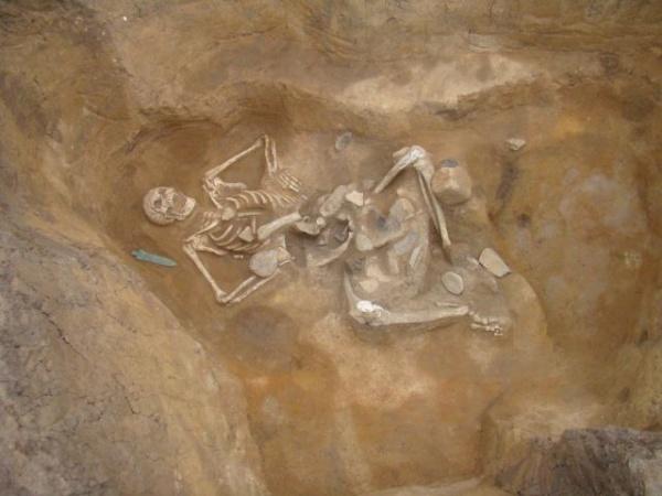 Senzaţional: Un Goliat de Carei descoperit in urma lucrărilor la şoseaua de centură