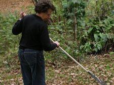 Lucrări de toamnă în grădină în octombrie