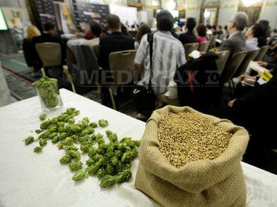 Ministerul Agriculturii vrea să crească subvenţiile pentru orz şi hamei