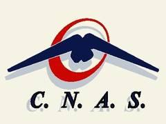 NOAPTEA MINȚII. Preşedintele CNAS, Vasile Ciurchea, nu mai vrea ca românii din diasporă să fie tratați în România