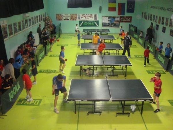 Cupa 2013 la tenis de masă în organizarea Tapo Carei