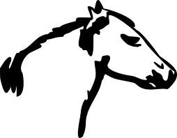 68 de cranii de cal aruncate la Drăguşeni