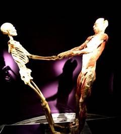 "Record de vizitatori la expozitia ""The Human Body"""