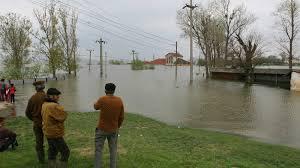 Lucia Varga: Principala cauză a inundaţiilor în România, defrişările