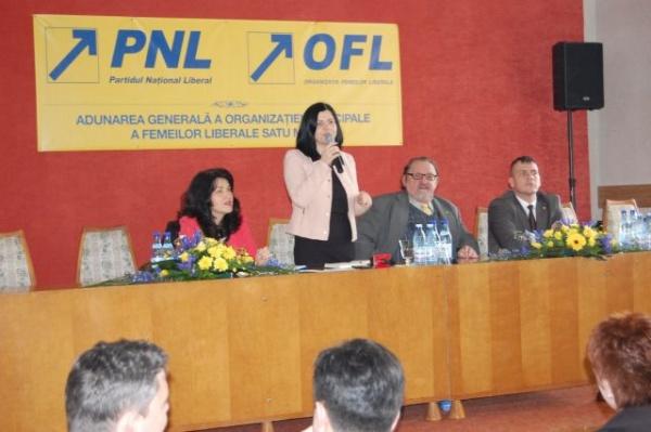 Alegeri la OMFL Satu Mare