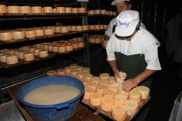Dispare brânza de Năsal ?