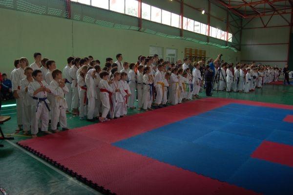 1 Iunie la Karate Do Carei