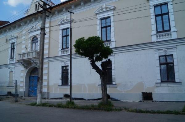 Pe cine reprezintă edilii municipiului Carei ?