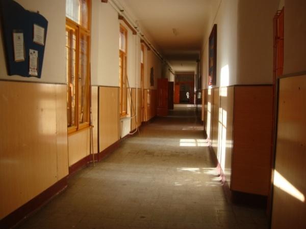 Pregătiri pentru noul an şcolar în şcolile careiene