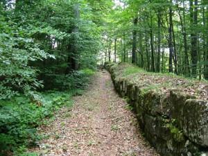 Descoperire importantă la Crucişor:Cetatea Pintii