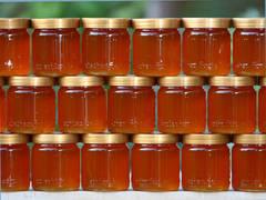 Miere contrafăcută, printre ajutoarele UE – 6 tone, retrase din depozite