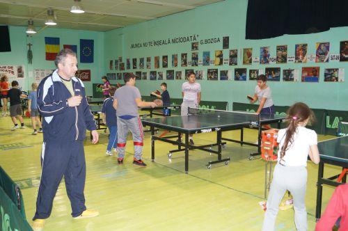 Memorialul de tenis de masă Vasile Macari la Carei