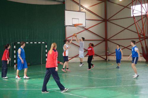 Baschet demonstrativ: Liceul Teoretic-CSM Satu Mare