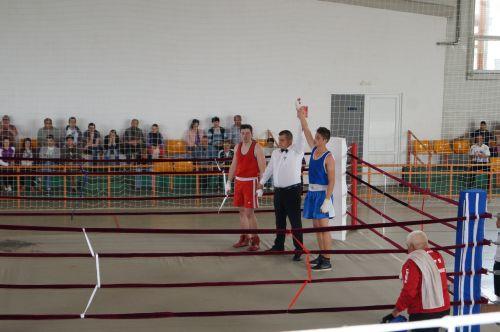 Toţi pugiliştii careieni au obţinut primul loc la Campionatul judeţean de Box